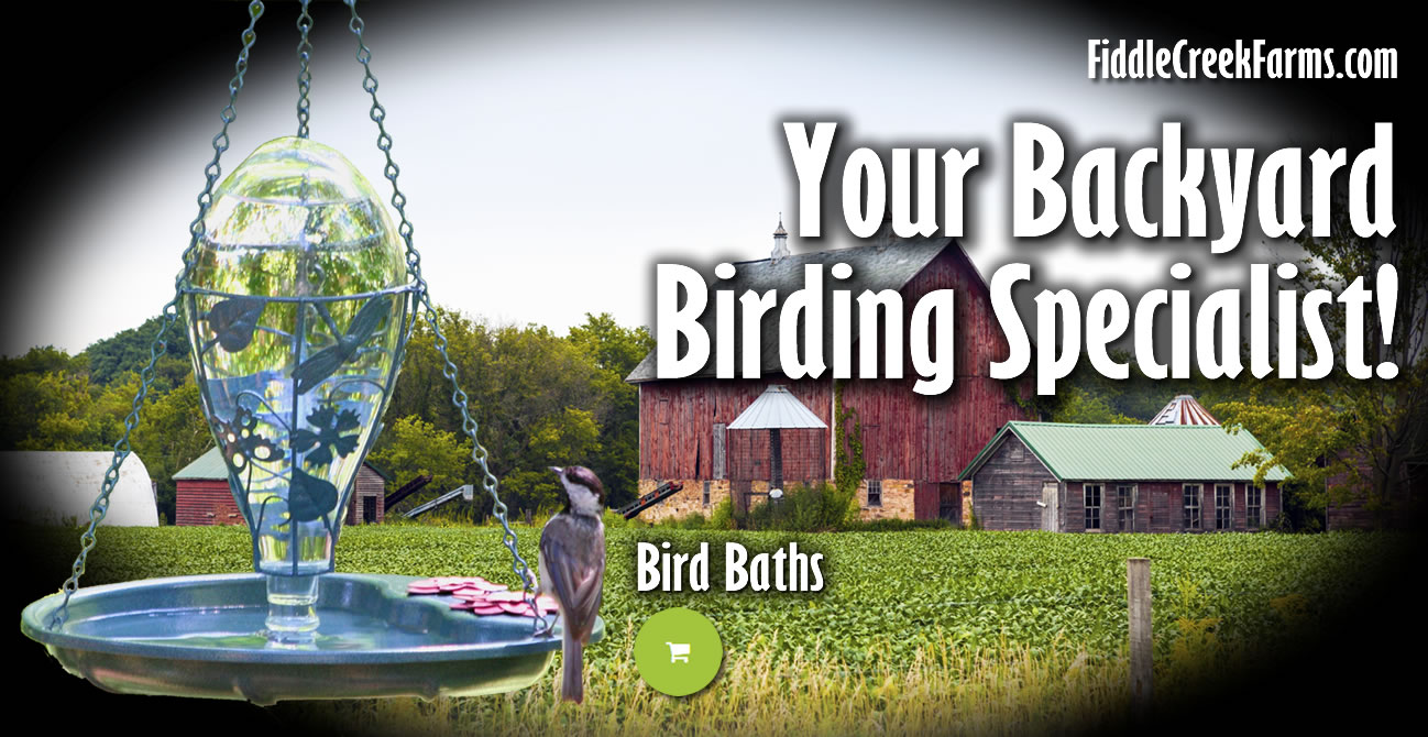 Bird Baths, Fountains and Ponds
