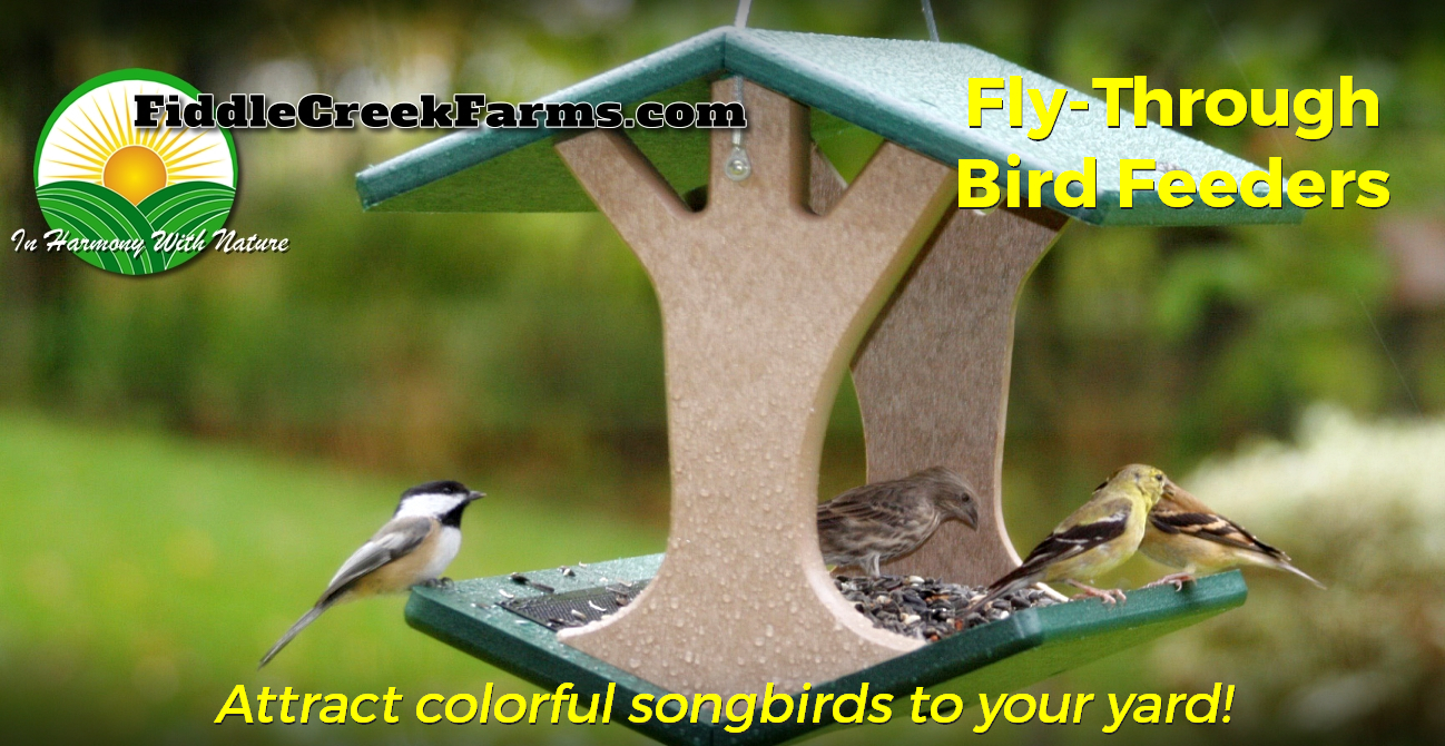 Fly-Through Bird Feeders