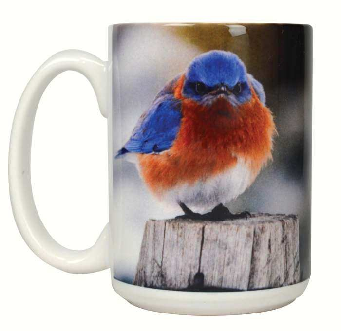 Mad Bluebird Ceramic 15 oz. Coffee Mug Set of 2