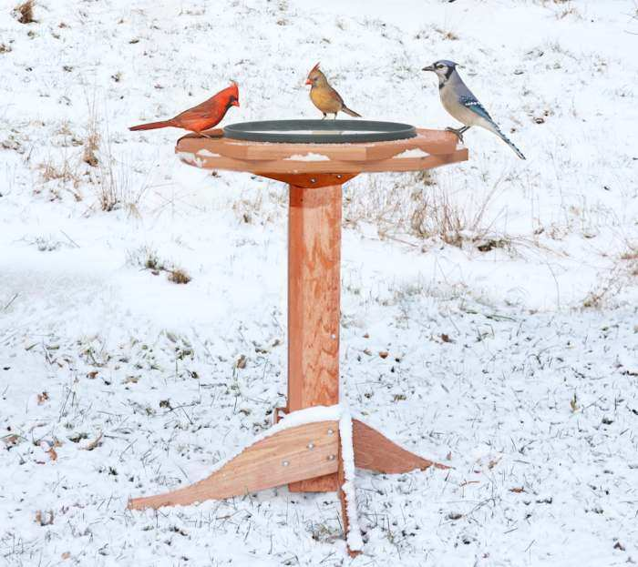 Deluxe Heated Double Ring Classic Bird Bath