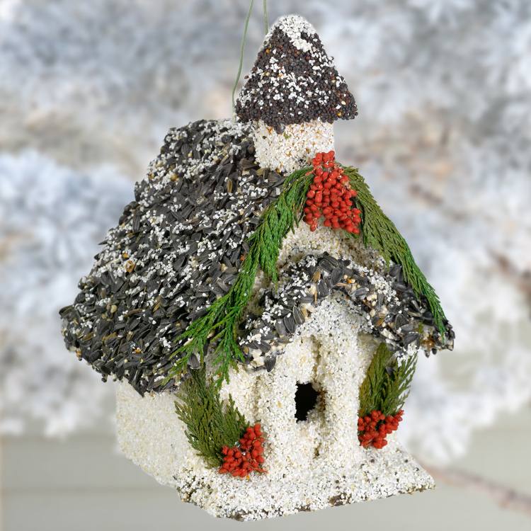 Christmas Church Edible Birdhouse