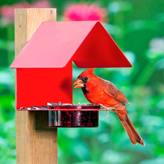 Fence/Post Metal & Glass House Bird Feeder Red