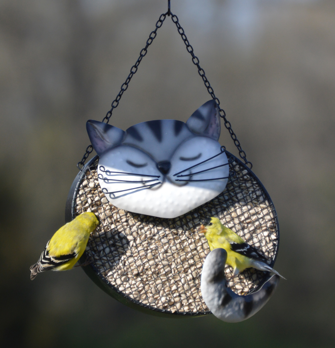 Deco Mesh Bird Feeder Black & White Cat