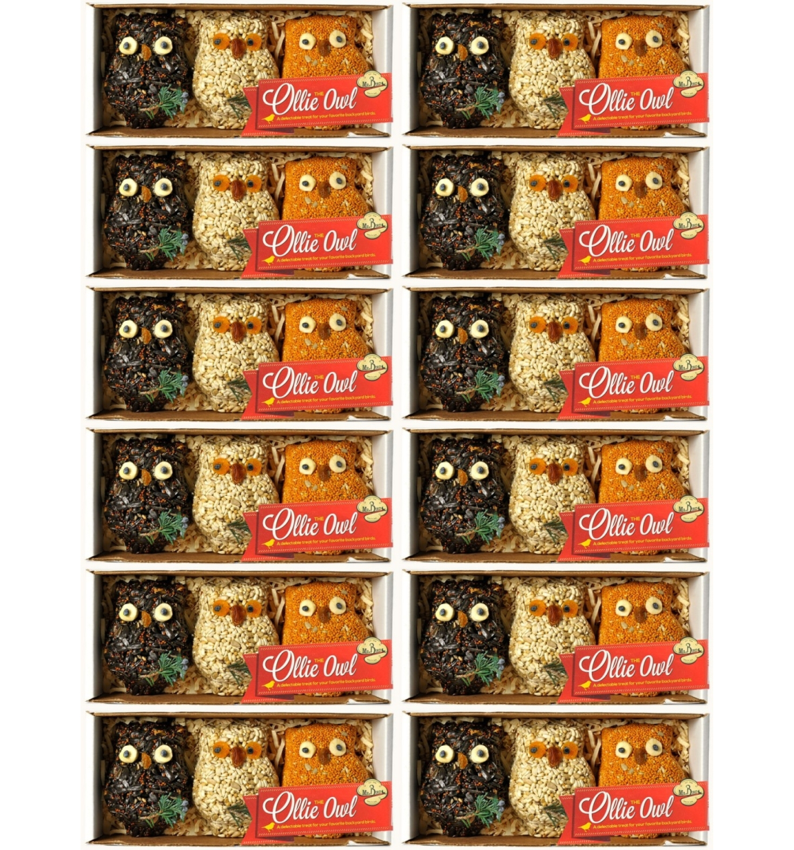 Ollie Owl Birdseed Ornament Gift Box 12/Pack