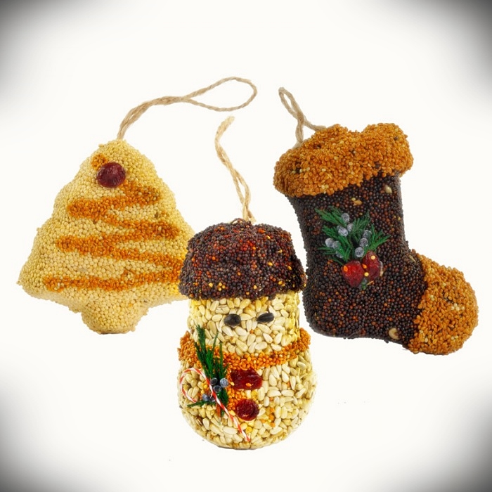 Christmas Shapes Bird Seed Ornament Gift Box 12/PK