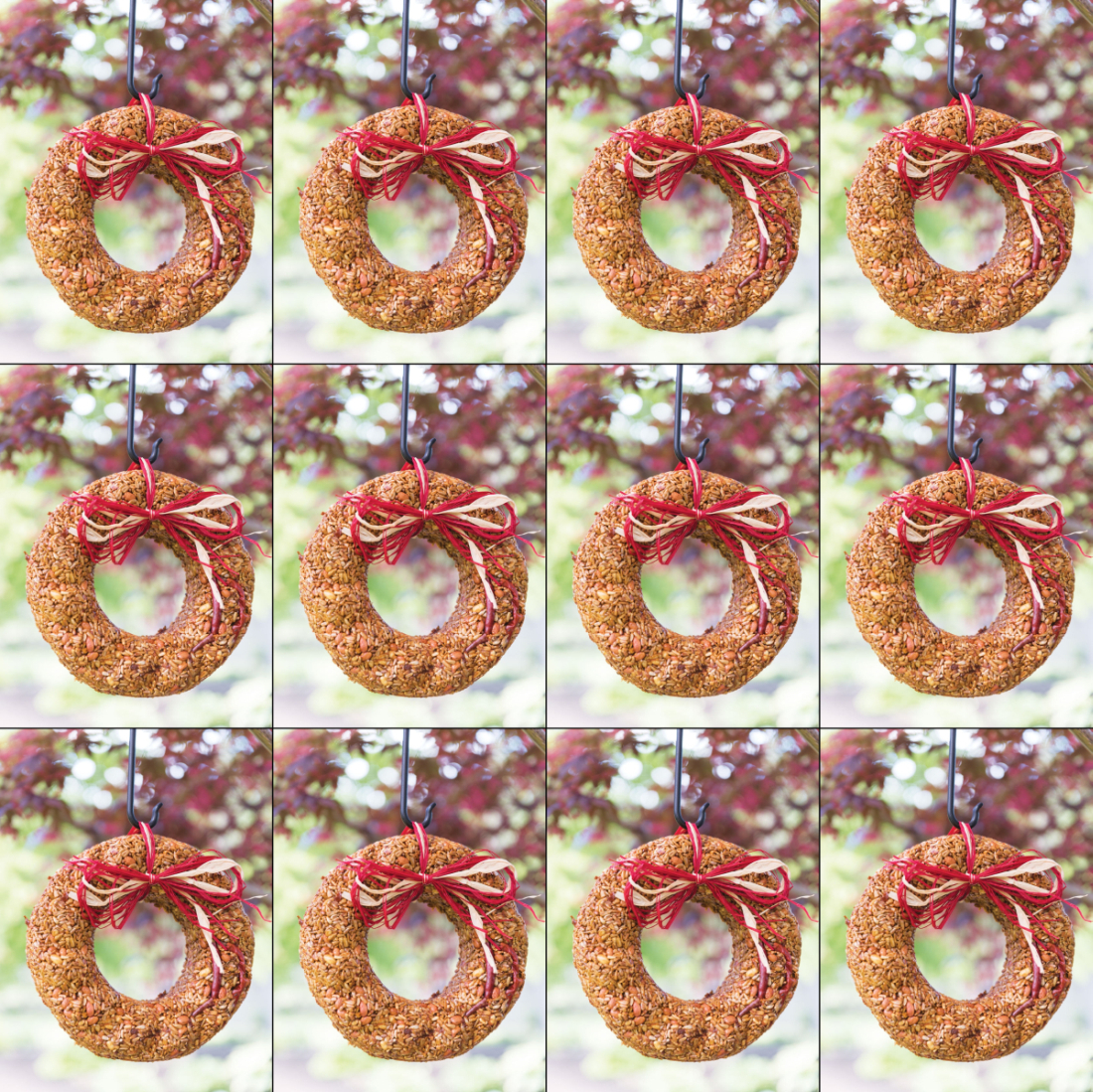 Flaming Hot Edible Bird Seed Wreath 12/Pack