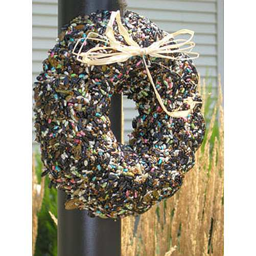 Spring/Summer Birdie Seed Wreath