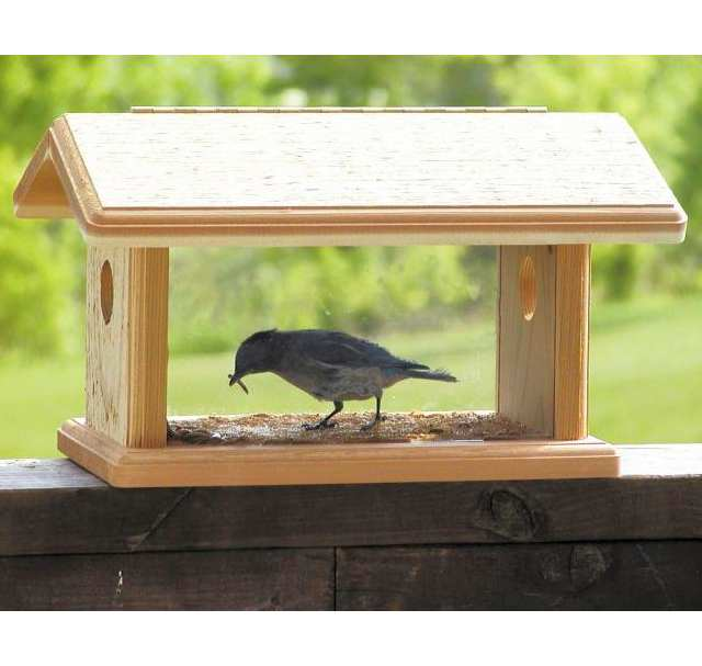 Wood Country Cedar Bluebird Feeder
