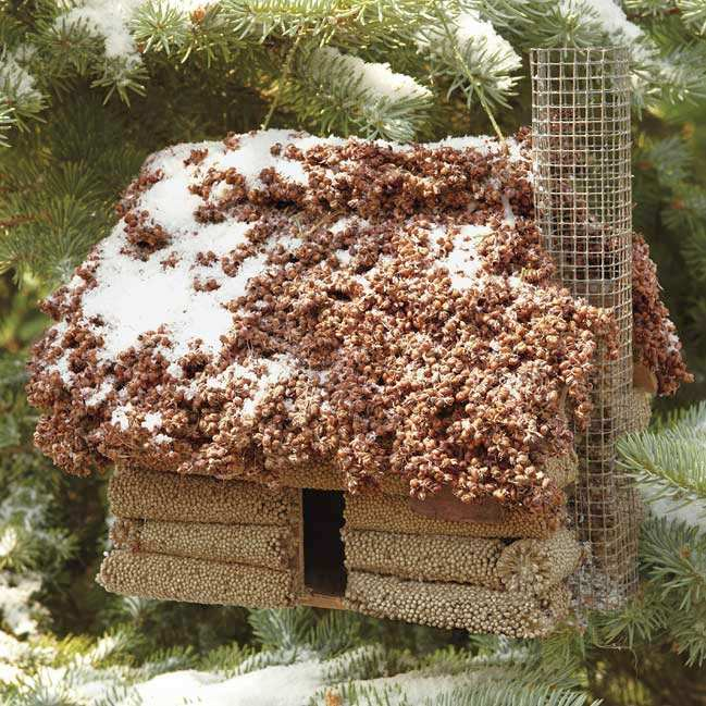 Log Cabin Edible Birdhouse w/Red Sorghum Roof