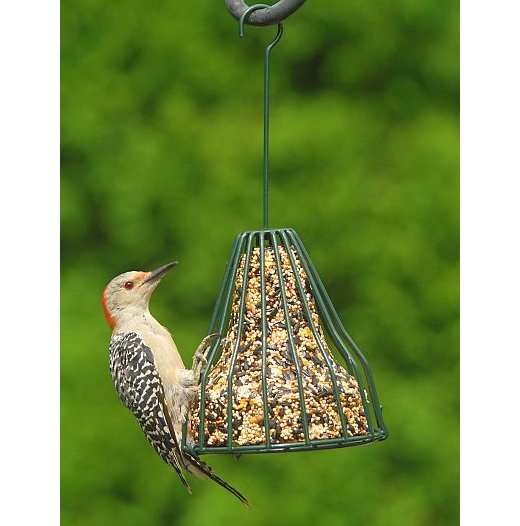 Songbird Birdie Bell Feeder w/Three Seed Bells