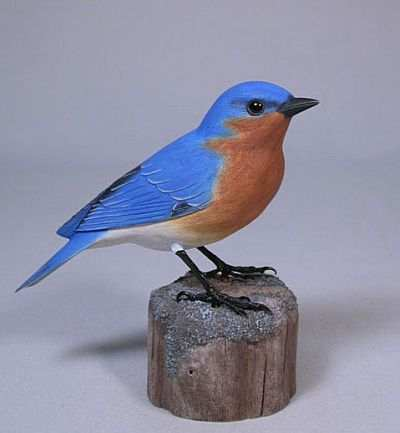Carved Eastern Bluebird Male #1
