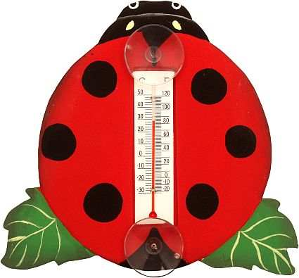 Weather or Not Window Thermometer Ladybug