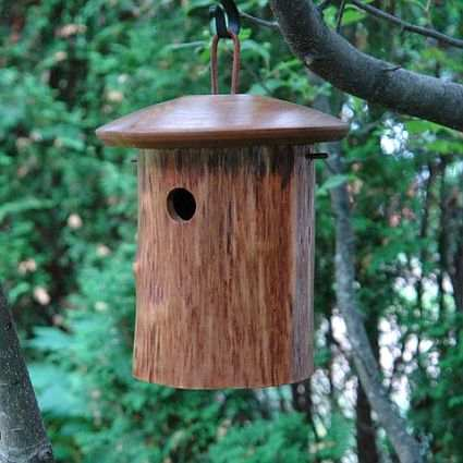 Mango Tree Collection Natural Chickadee Bird Home