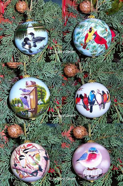 Songbird Series Ornament Collection Set of 6
