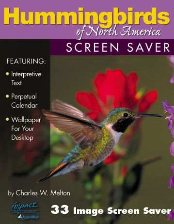 Hummingbirds of North America Screen Saver