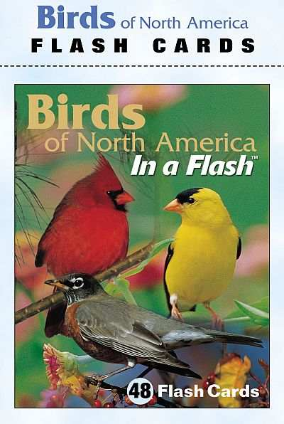 Birds of North America Flash Cards