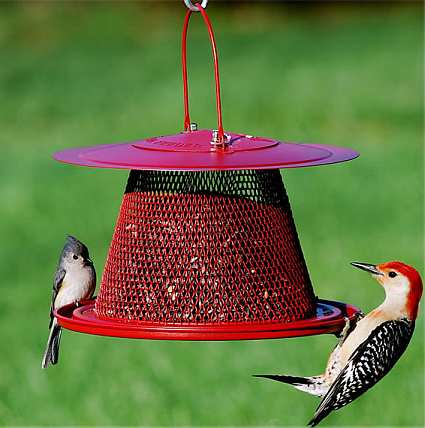 No/No Red Cardinal Collapsible Wire Mesh Feeder
