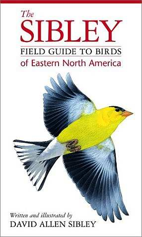 Sibley Field Guide To Birds Eastern North America