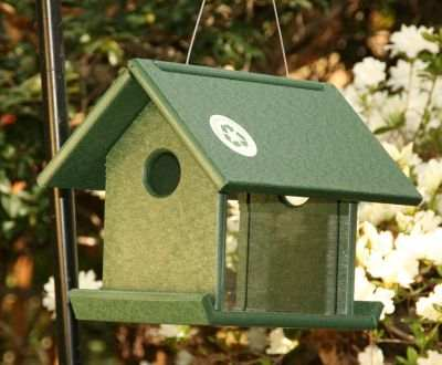 Rubicon Recycled Plastic Mealworm Feeder Green