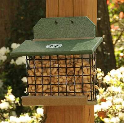 Rubicon Recycled Squirrel Feeder Hunter Driftwood
