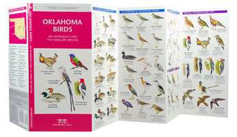 Birds Of Oklahoma Field Guide, Oklahoma Bird Identification And Reference  Guide For Nature Enthusiasts At Fiddle Creek Farms