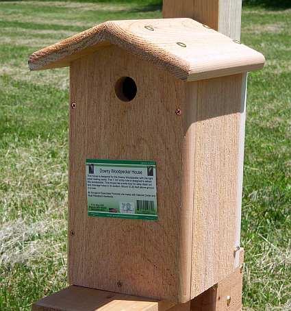 Downy Woodpecker Nest Downy Woodpecker House