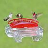 Jewel Box Window Hummingbird Feeder