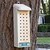 Conservation Solitary Bee House