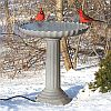 Scalloped Heated Birdbath w/Pedestal Gray Stone