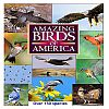 Amazing Birds of America DVD