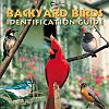 Backyard Birds Identification Guide