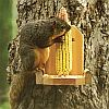 Woodlink Squirrel Ear Corn Holder