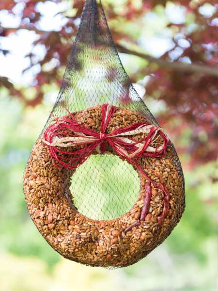 Flaming Hot Pepper Edible Bird Seed Wreath