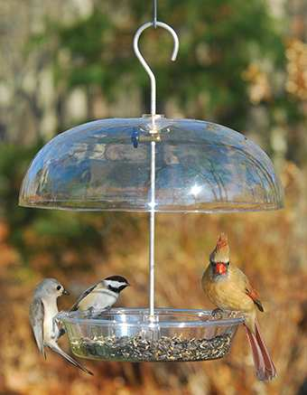 Aspects Vista-Dome Bird Feeder