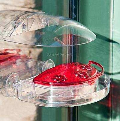 Jewel Box Window Hummingbird Feeder with Tweet Spot Canopy