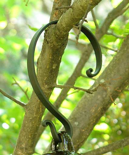 Forged Steel Hook- Hang From Branch