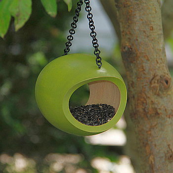 Mango Fly Through Bird Feeder Green