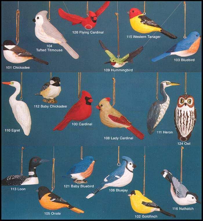 audubon fisher wildlife life