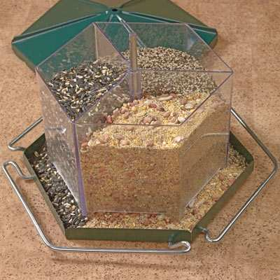 Triple Bin Party Feeder Holds 3 Types of Seed at Once!
