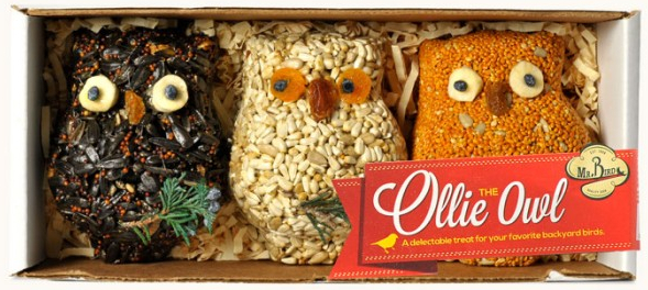 Ollie the Owl Bird Seed Ornament Set of 3