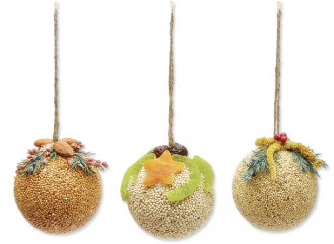 Fruit and Nut Bird Seed Ball Ornaments