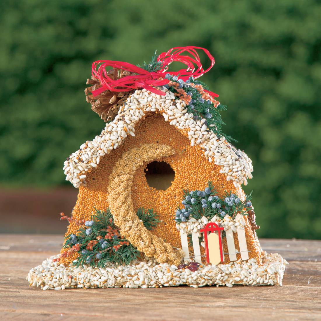 Birdie's Bed & Breakfast Chalet Edible Birdhouse