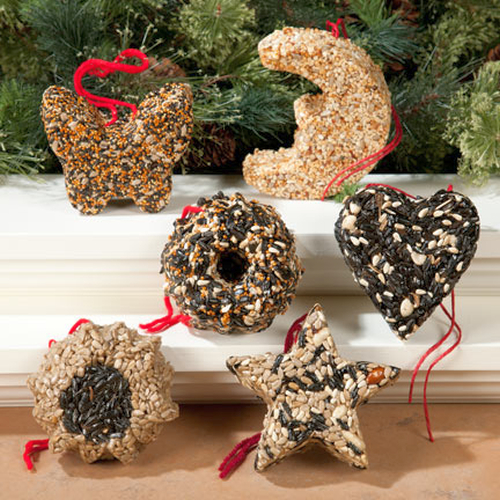 Assorted Garland Bird Seed Ornaments Pack of 6