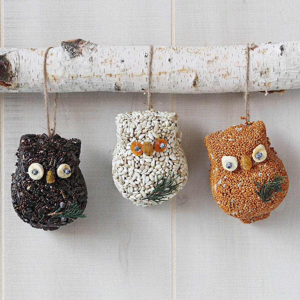 Ollie Owl Birdseed Ornament Set of 6