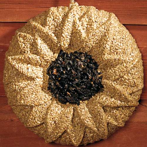 Sunflower Seed Wreath