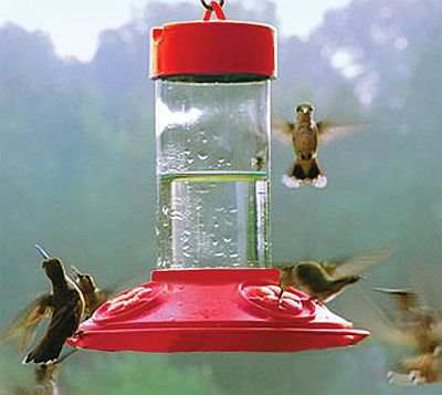 Dr. JB's Clean Hummingbird Feeder All Red