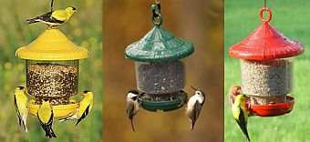 awesome clingers only feeder bird seed feeders bird feeders globe bird feeders for small fiddle creek farmss globe 755